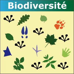 Illustration Standard CNIG « Continuités Ecologiques Régionales »